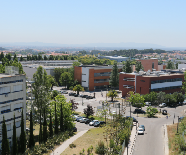 campusfct